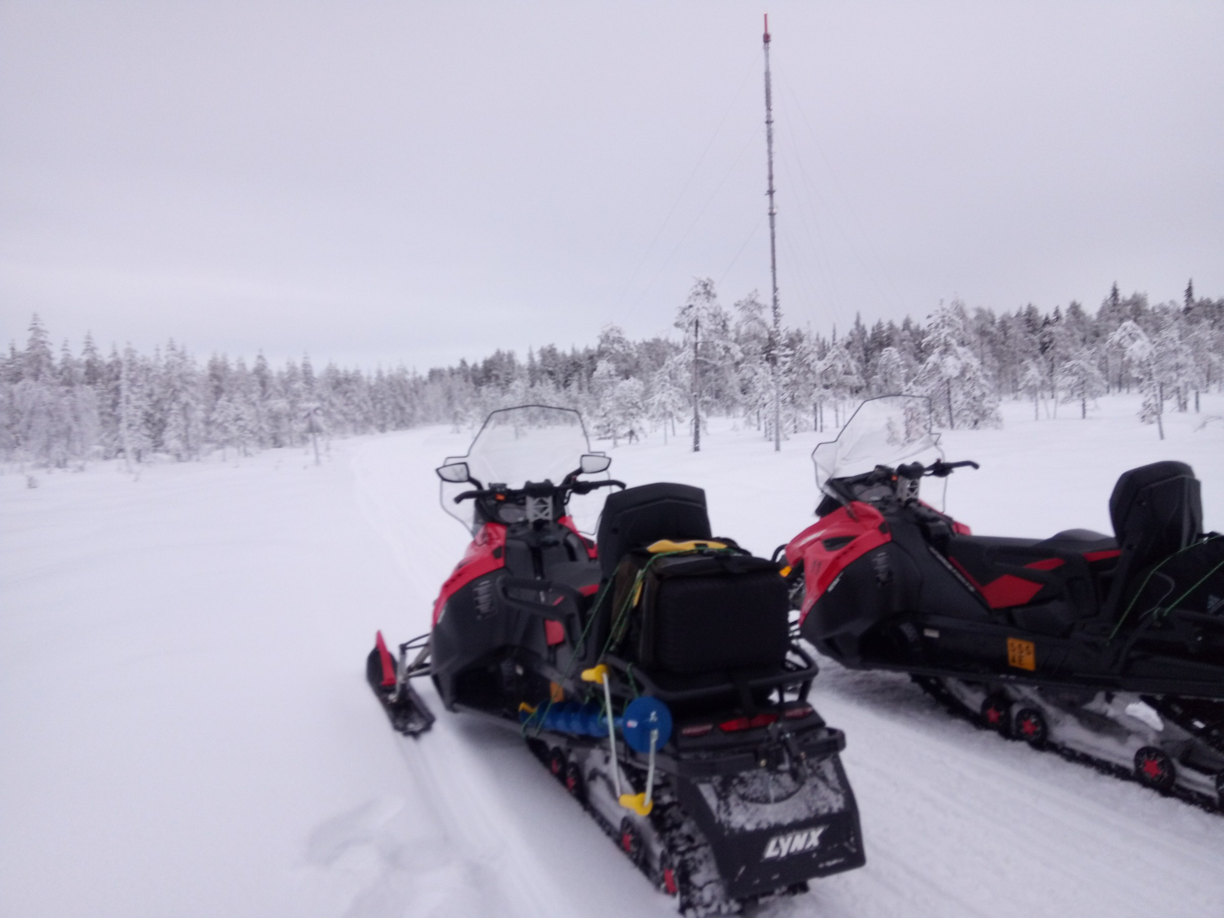 Balade en motoneige à Rovaniemi