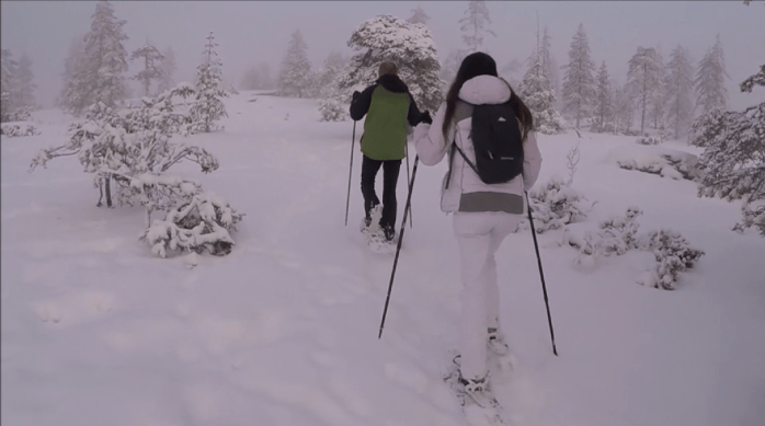 Private snowshoe excursion