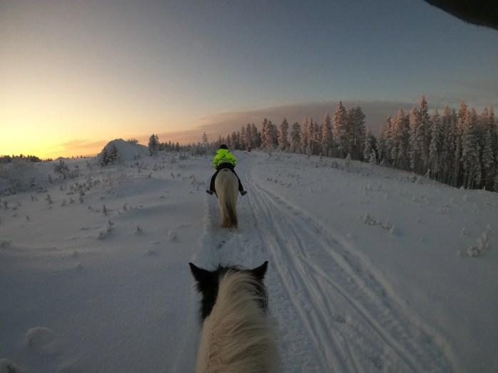 balade a cheval à Rovaniemi