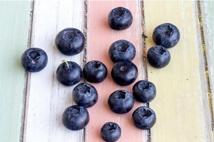 Wild Arctic blueberries, also called bilberries, freshly picked, before freeze-drying and powdering. Wild freeze-dried blueberry powder, also called freeze-dried bilberry powder, is a great alternative to blueberry extract and blueberry supplement.