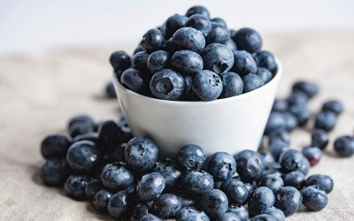 Best Blueberry Powder – Which One To Buy – 10 Tips
