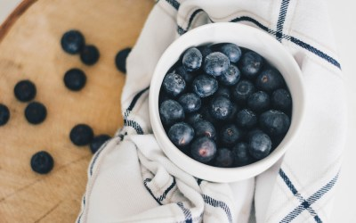 Wild Blueberries UK – Where To Find Them