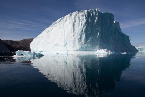Qik - Polar Bears and Glaciers