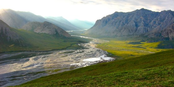 Alaska River Trips and Wilderness Tours