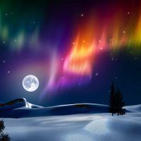 Embrasser l'aurore - Fattoum Abidi