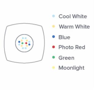 AI Prime LED Layout