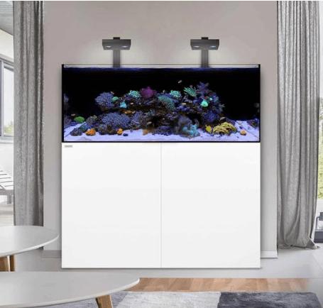 Waterbox Reef Aquarium
