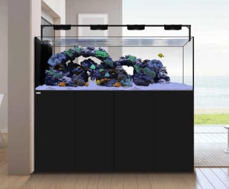 Waterbox Peninsula Aquarium