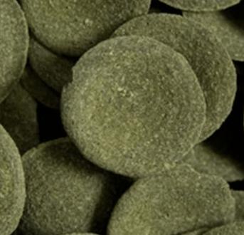 Algae Wafer discs