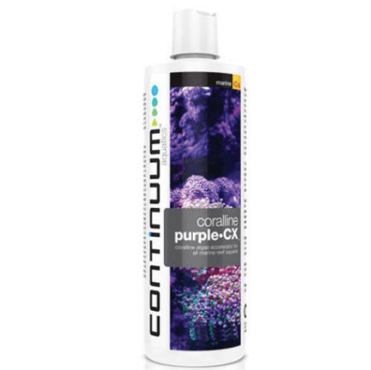 Continuum Purple CX