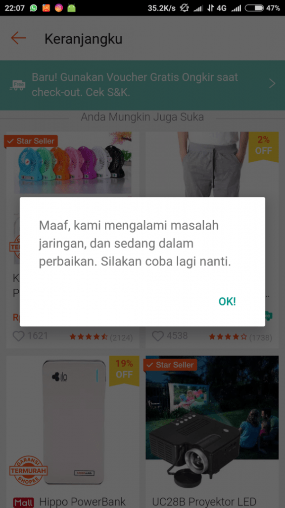 Server Down Ketika Flash Sale