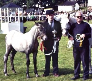 Winning filly foal
