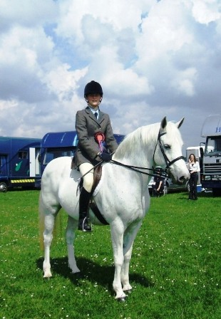 Consistent working hunter and ridden winner
