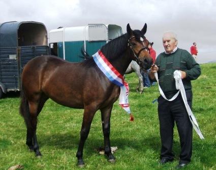 Dooneen Starlight with Peter Molloy