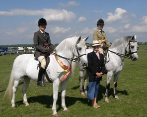Champ and Reserve, Tulira Katie Daly and Emer's boy, Judge Gill Glynn
