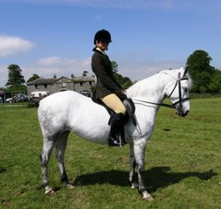 Creggrush Realta, 1st day out in Ridden Class with Ellen Tuck