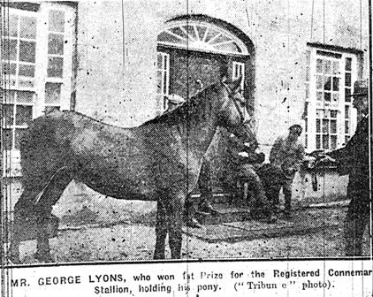 George Lyons with dun stallion Gold Digger No 5 in Stud book.1st prize