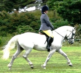 Ruth Brennan 2nd in Ridden, won Side-saddle with Taibhse na Mara