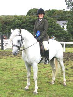 Spiddal Wills Boy runner-up in ridden Stallion Class