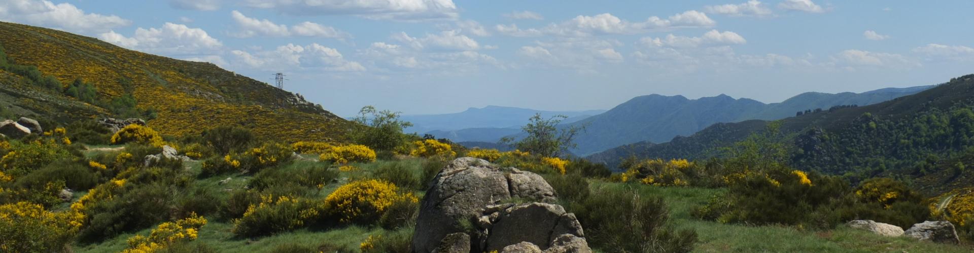 paysage vers la vallée de Thines au printemps