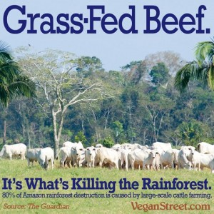 grass-fed-beef-amazon