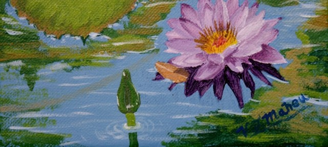 cropped-WaterLilly-640×460.jpg