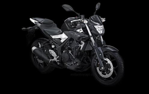 Yamaha MT-25 (3)