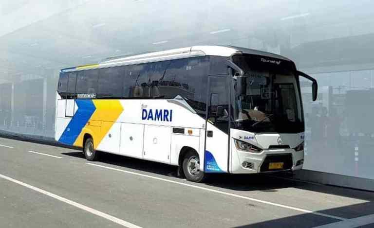 bus gratis ke bandara yia