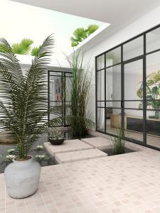 render-3d-visualización-arquitectónica-vivienda-patio