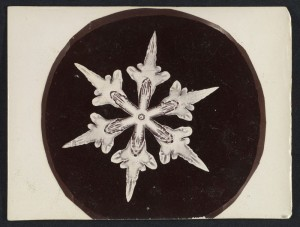 Fotografi Kepingan Salju Pertama di Dunia