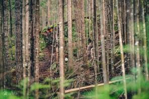 Jessie Mcauley dropping through the trees