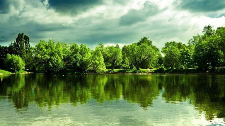 1080p-Nature-Wallpaper-Download-Free-768x432