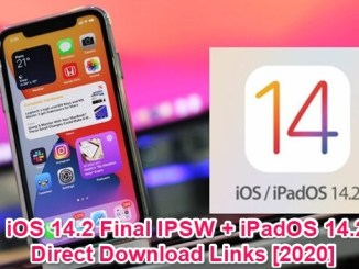 ios 14.2 final ipsw and ipados 14.2 ota profile ipsw