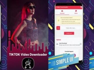 downloader for tiktok