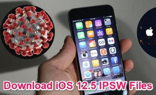 ios 12.5 ipsw download
