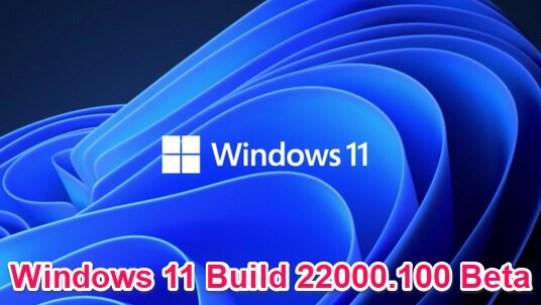 windows 11 beta build 22000.100