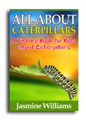 Ceterpillars book cover small