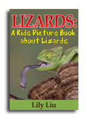 Lizards book cover small