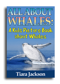 Whales book cover small