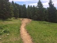 trail1-20jun21016 copy