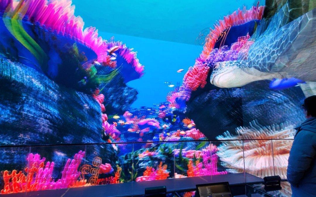 Los servidores Christie Pandoras Box ofrecen unas fabulosas experiencias visuales en visualización inmersiva 3D