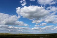 Big fen sky