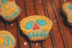 funny cookie