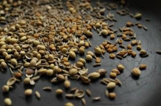 Toasting seeds