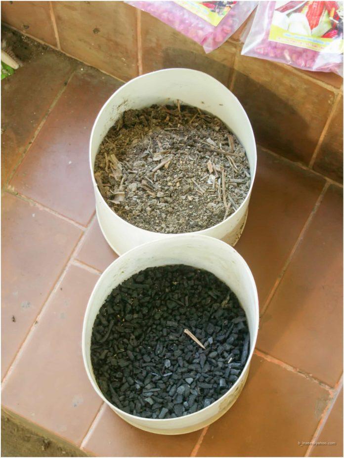 Biochar fertilizers