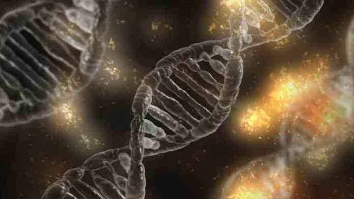 Genetic risk factors