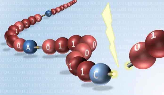 digitally encoded data in synthetic molecules read