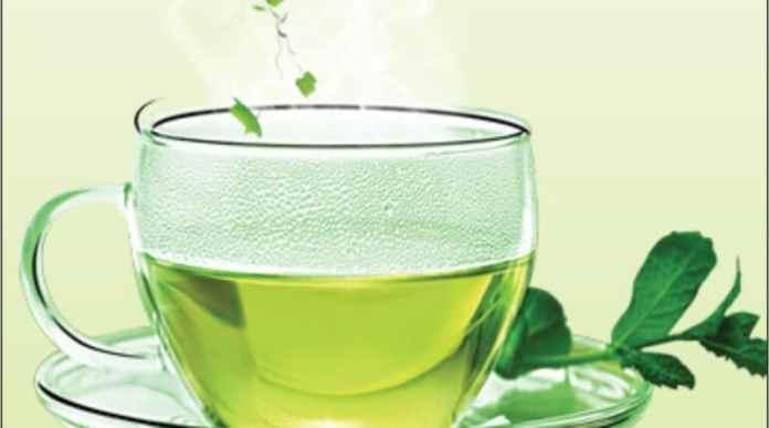 control weight loss- Green Tea