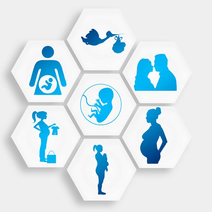 spinonews.com IVF embryo donations