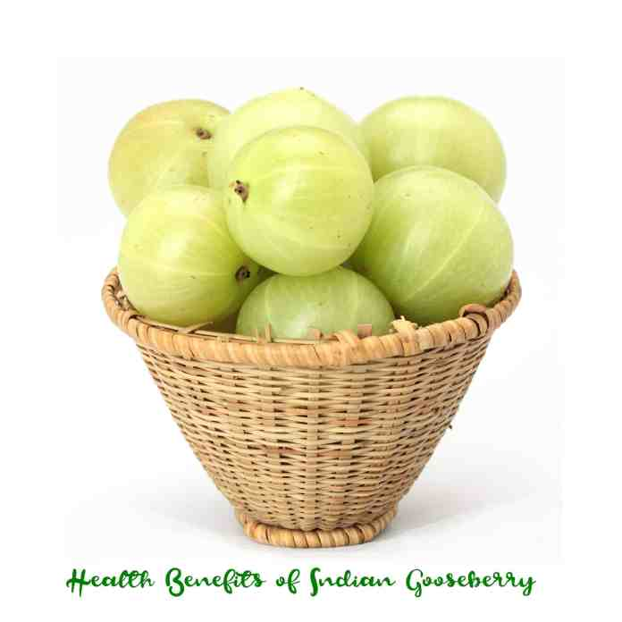spinonews Indian gooseberry